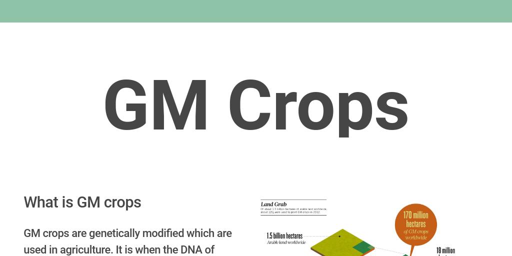 What Is Gm >> Gm Crops By Niels Jantzen Infogram